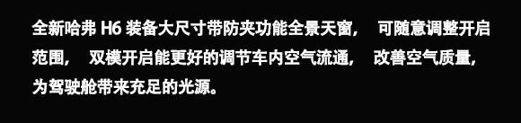 全新哈弗H6 天窗- .jpg