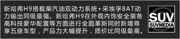 试车文章-H9说明文字-3动力.jpg