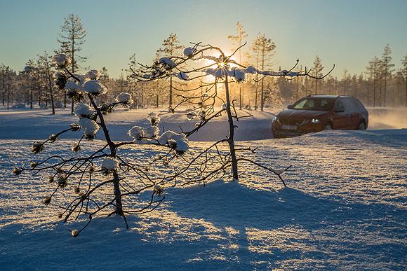 finland2040.jpg