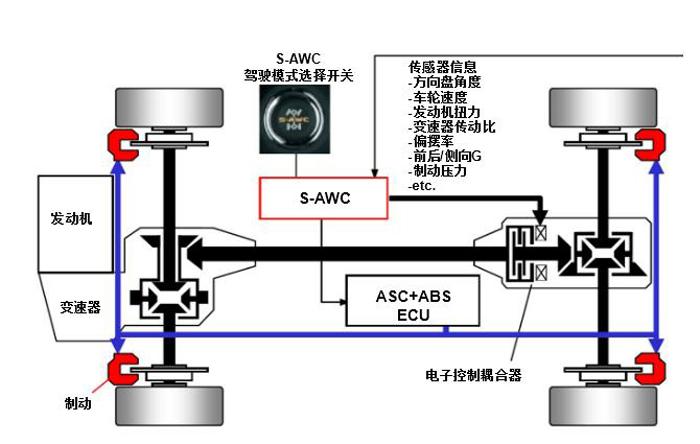 SAWC.jpg